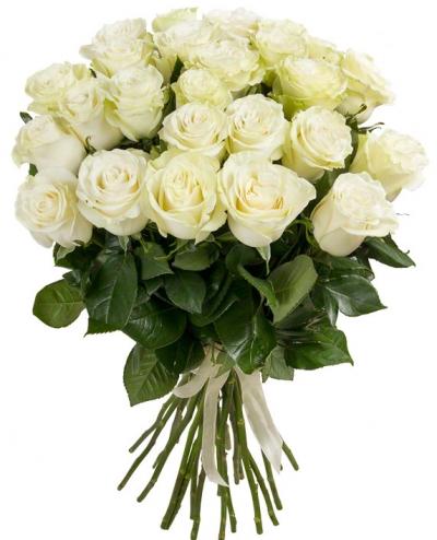 №8 Букет 25 белых роз