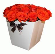 Розы в плайм-пакете